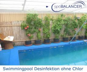 Swimmingpool Desinfektion ohne Chlor